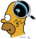 loupe_homer.png
