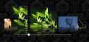 Imageflow 1.0.1